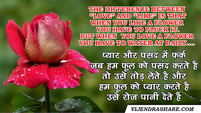 love and like difference  quotes