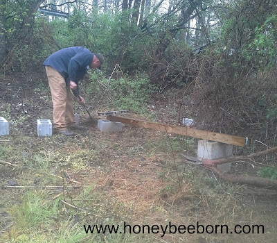 out-apiary site for honey bees