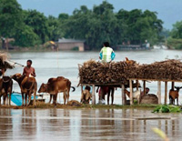 To Reduce Floods, Assam Gets $60 Million Loan
