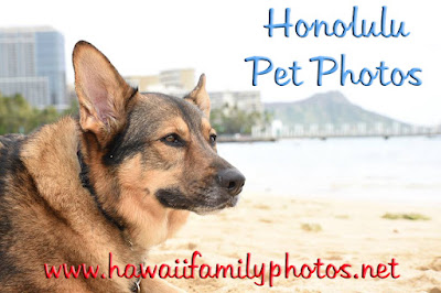 Oahu Photography