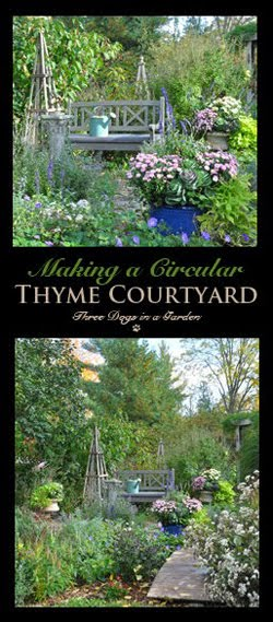 Making a Circular Thyme Courtyard