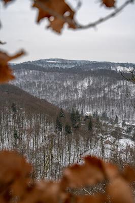 Winterwandern in Bad Harzburg | Kleiner und Großer Burgberg und Besinnungsweg | Baumschwebebahn | Wandern im Harz 20