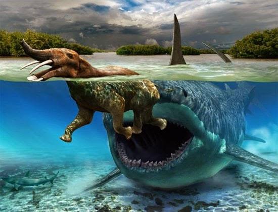Tubarão maior que um Tiranossauro - Megalodon Img 2
