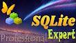 SQLite Expert Professional 5.3.4.460 Full Version