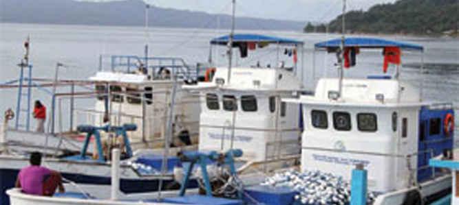 Kapasitas tampung docking milik PPI di dusun Eri, Desa Nusaniwe, Kecamatan Nusaniwe, Kota Ambon segera ditingkatkan agar bisa menampung kapal berbobot 30 gros ton (GT), dari semula hanya 10 GT.