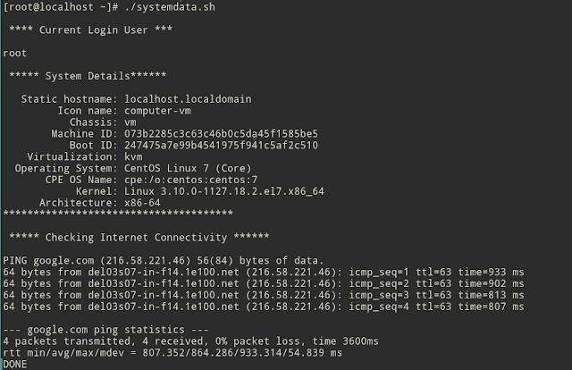 bash programming variable examples