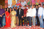 shatamanam bhavathi success meet-thumbnail-47