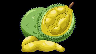 clipart buah durian free