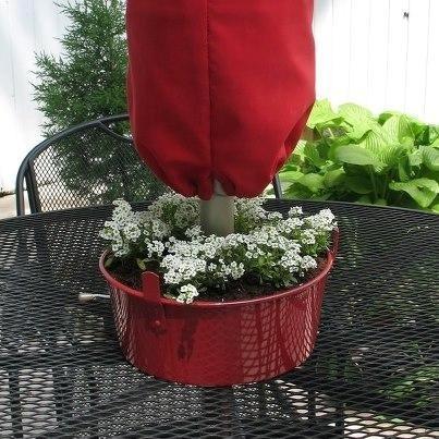 Bekas cetakan kue dijadikan pot bunga