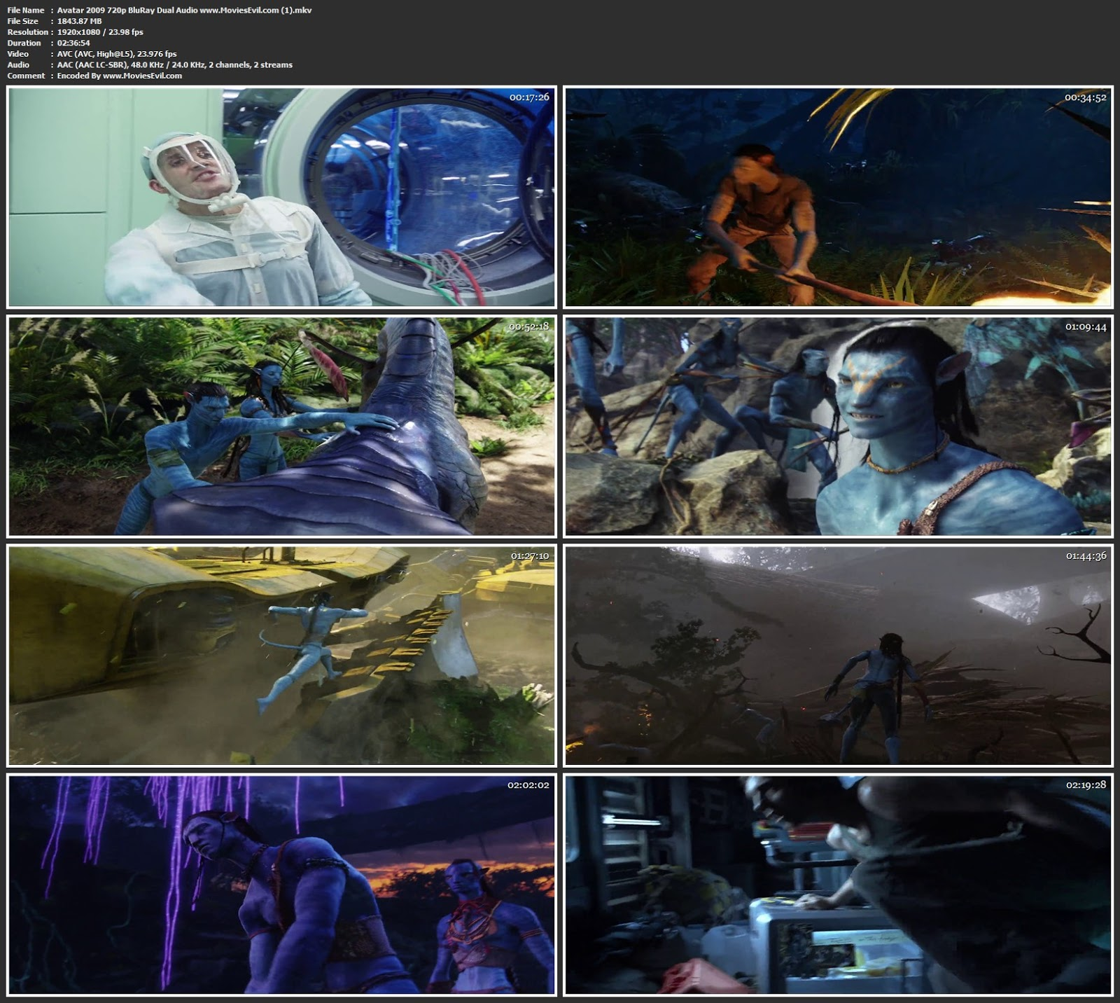 Avatar 2009 720p BluRay Dual Audio Free Download Watch