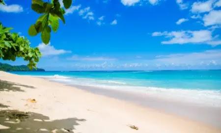 فوائد الذهاب إلى الشاطئ   أهمها التخفيف من الكورتيزول