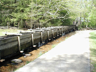 This is the wood flume that feeds water to the Cable Mill grist mill.
