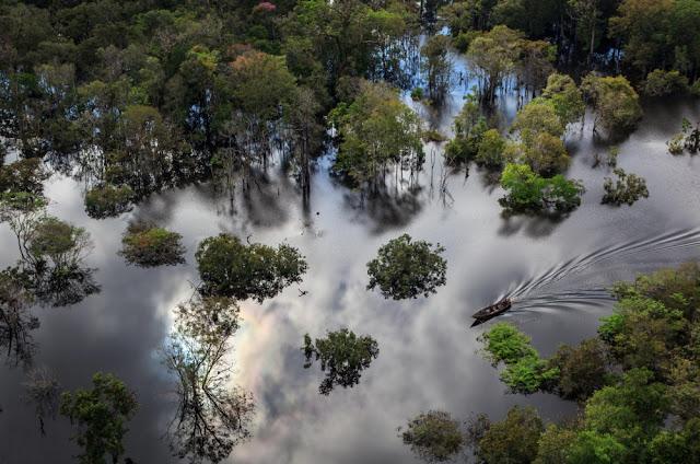 Εθνικό πάρκο Αμαζονίου, Βραζιλία
