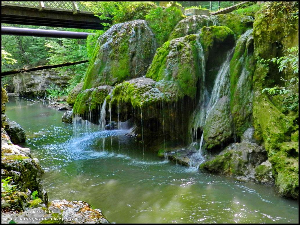 Parcul-National-Cheile-Nerei-Beusnita-2-550x415   WORLD OF ...   Cheile Nerei