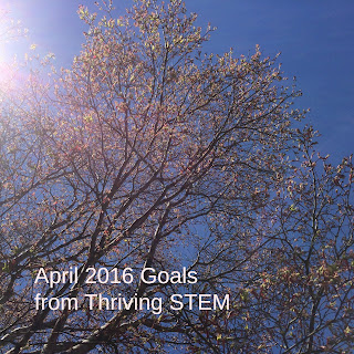 A look at my goals as blogger, mom, and home maker in April 2016.