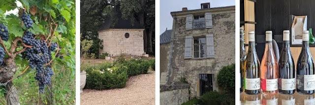 Loire Valley Wine: Chateau de Miniere