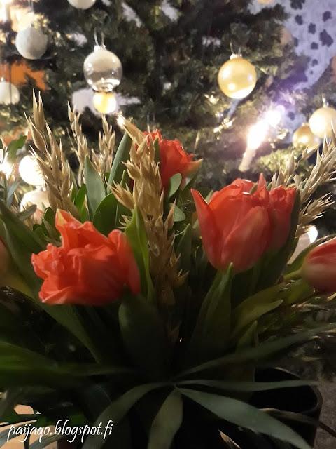 tulppaanit ja kuusi joulu 2018