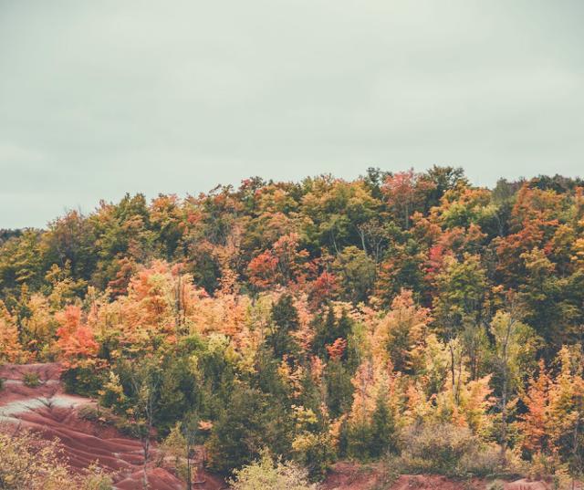 Il treno del Foliage: vivere slow