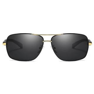 Aviator Sunglasses 8724