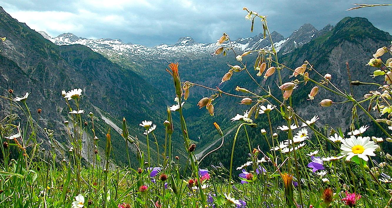 Альпийская горная долина Большой Вельсерталь.