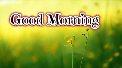 Download Good Morning Images