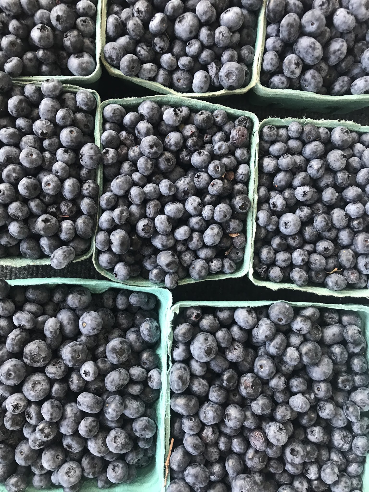 Farmers Market Blueberries | biblio-style.com