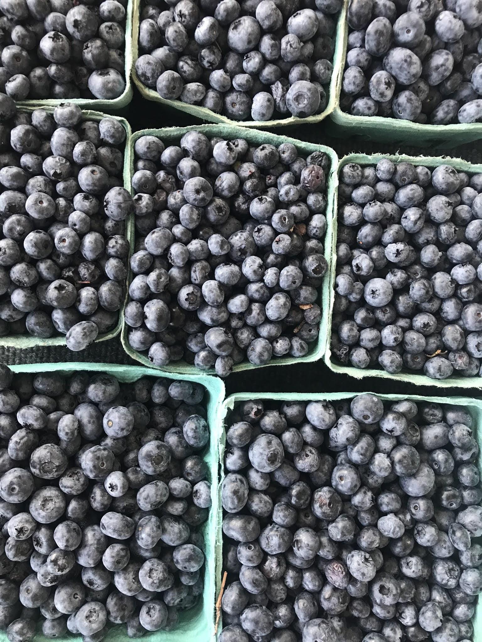 Farmers Market Blueberries | biblio-style.com
