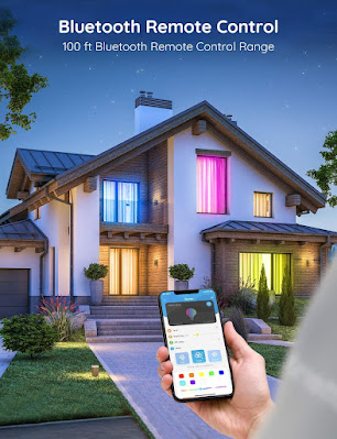 Govee LED bliuetooth remote control