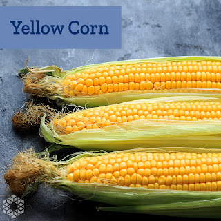 Yellow corn contains a pigment called carotenoids