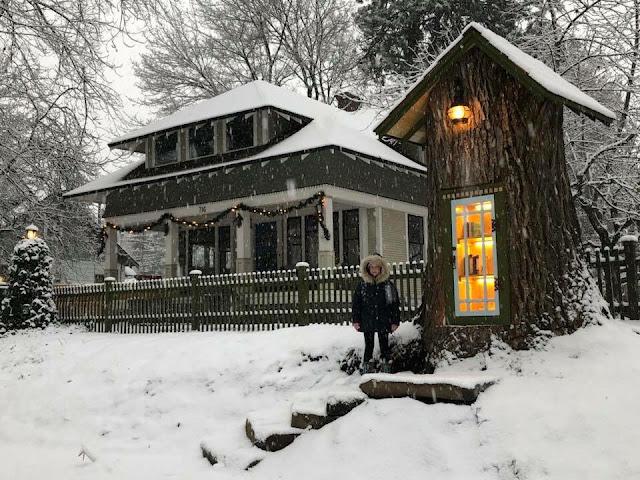 枯れゆく木を再利用?大きな木の中にできた小さな図書館?【c】
