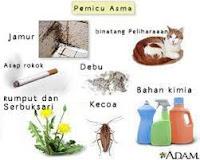 Beberapa Penyebab Alergi