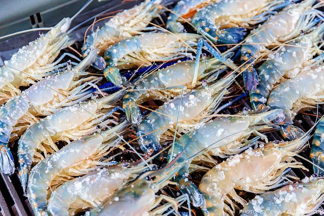 MG 9363 - 熱血採訪│阿布潘水產,專業烤肉、泰國蝦、活魚、帶殼蚵,中秋烤肉百種食材任你挑!