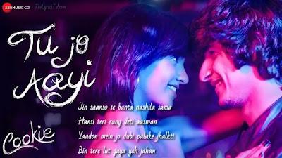 Tu Jo Aayi Hindi Song Lyrics - Cookie - Ryan D - Somraj G