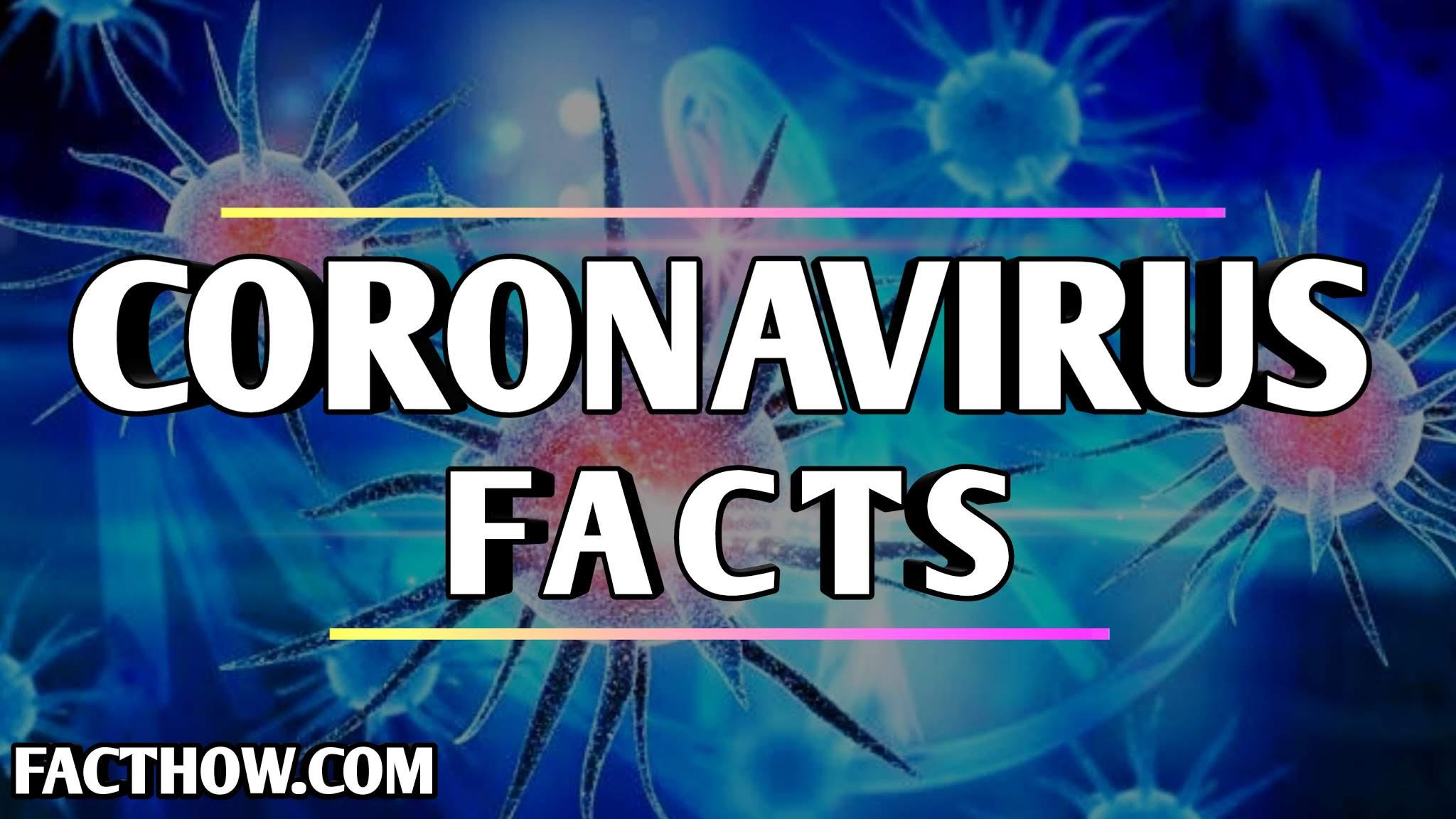 Covin-19, coronavirus symptoms, coronavirus facts in hindi on facthow, fact how, coronavirus in india, coronavirus china, coronavirus chicken, coronavirus ka ilaaj, coronavirus se kaise bachen, facts about coronavirus, WHO, coronavirus ka ilaaj, कोरोना वायरस से जुड़े खतरनाक तथ्य और जानकारी