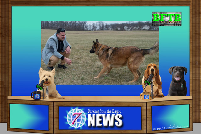 Dog news desk with Army vet and dog background