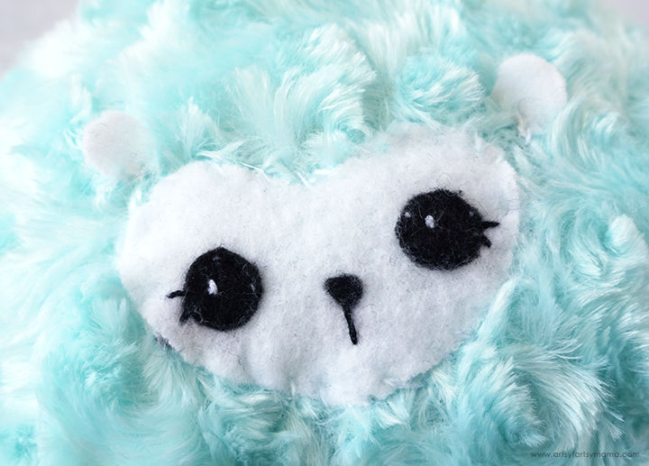Close Up of Pygmy Puff Face