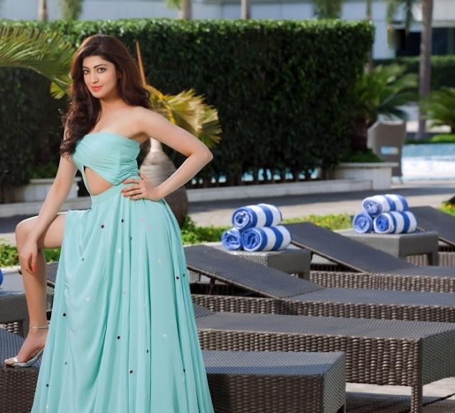 Actress Pranitha Subhash Latest Photoshoot Gallery Navel Queens