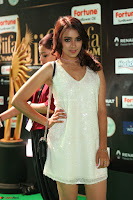 Beautiful Girls South Actress at IIFA Utsavam Awards 2017  Exclusive 36.JPG