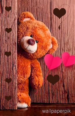 love hd lovely pics bear  wallpapers download