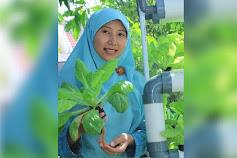 Innovative Urban Farming, Kunci Ketahanan Pangan Dunia