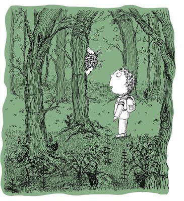 Illustration jeunesse children encre ink boy forest