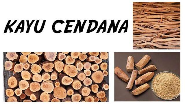 Mengenal kayu Cendana di Provinsi NTT