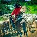 Com nome de rio, Corumbiara comemora titulação de terras urbanas e segue a trilha do boi no Sul de Rondônia