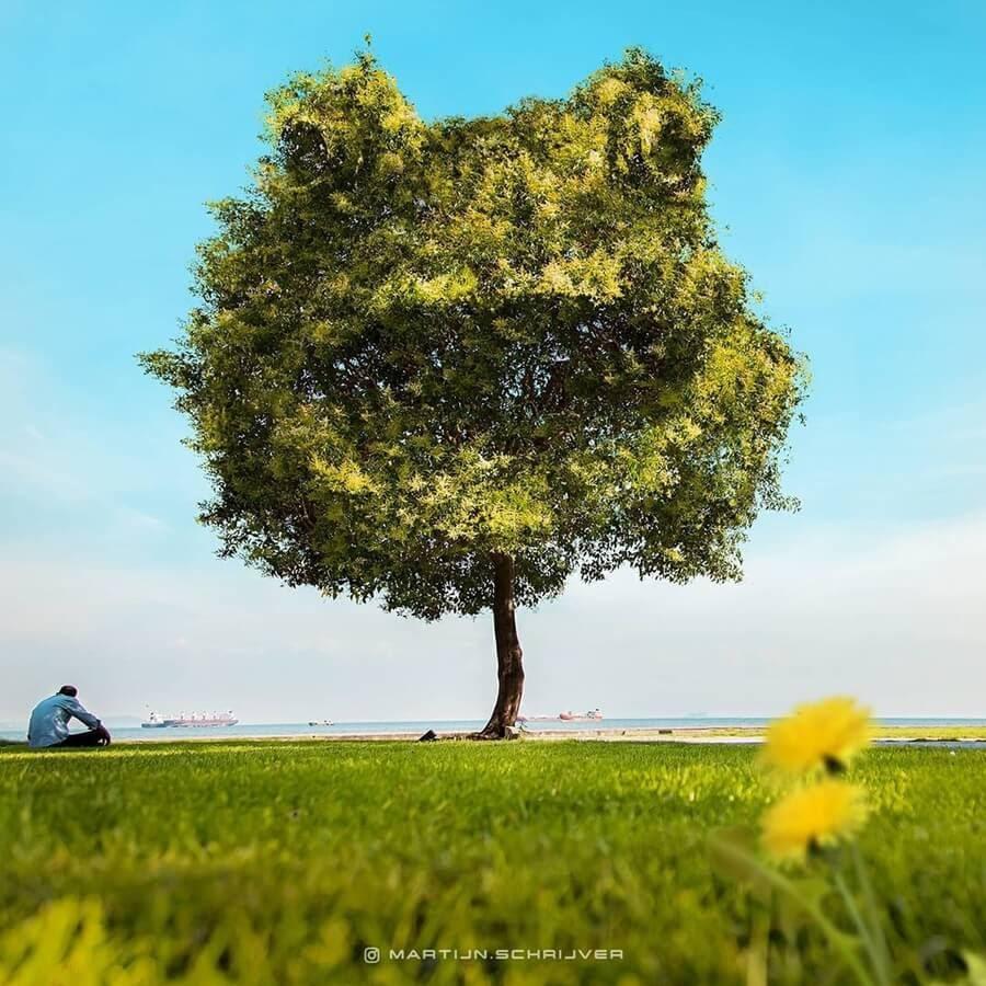 06-The-Frog-Tree-Martijn-Schrijver-www-designstack-co