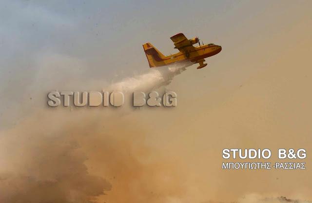 Μάχη με τις φλόγες στο Αδάμι Αργολίδας