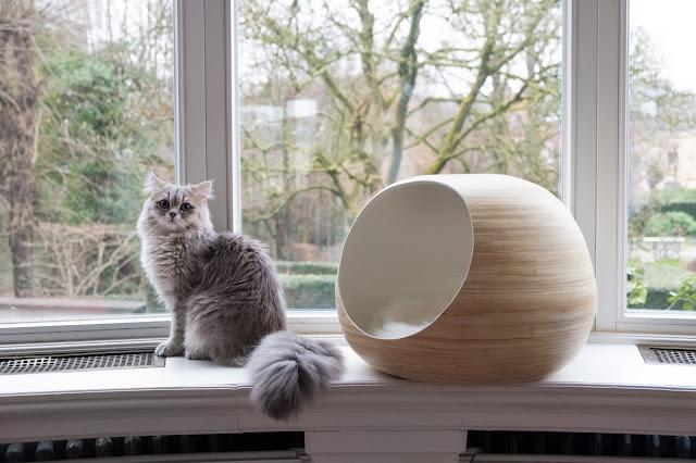 e-boutique produits de Luxe chats