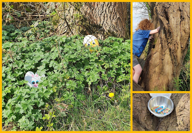 HARIBO Easter Egg Hunt hidden in hedge and 5ft high where 2 trees meet