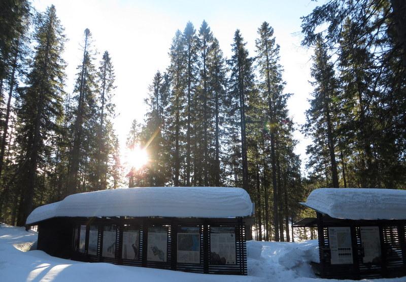 Entre Väst, Skuleskogen