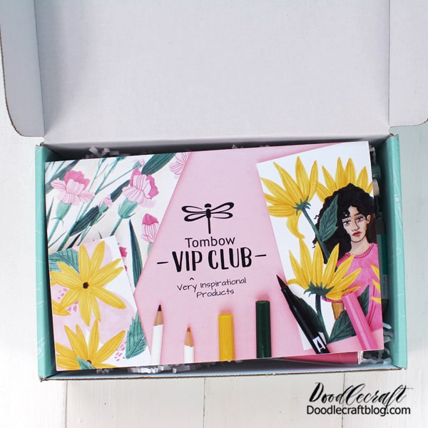 There's something so fun about getting this darling aqua box in the mail! The Creativity Kits don't last long and are the best value for the price. You get a fun kit with enough goodies to get started on something fun!