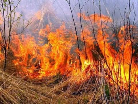 У Кагарлику вигадали спосіб боротьби із пожежами